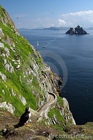 Free Skellig Islands - Puffin S Eye View, Ireland Stock Photo - 20774900