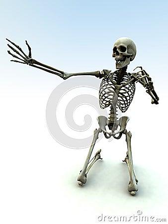 Skelton 34