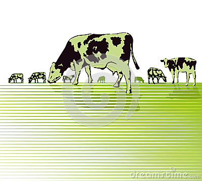 Sketch of Cows Grazing in a Pasture