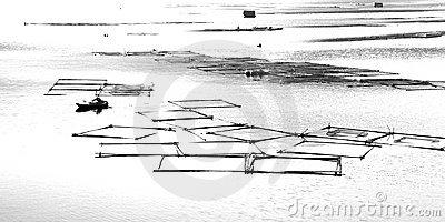 Sketch Fish Cage in Lishui River