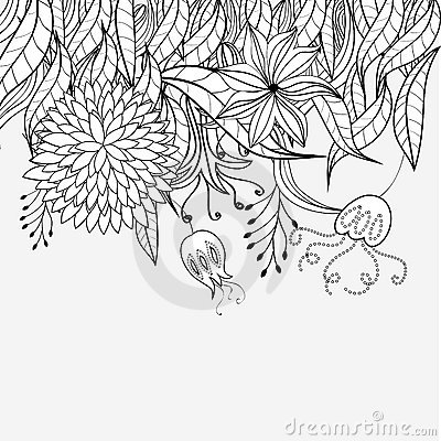 Sketch with floral ornament