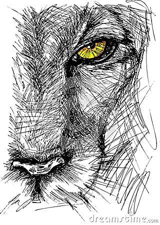 Sketch of a lion