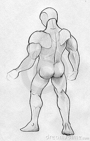 Sketch of a muscular man - back view