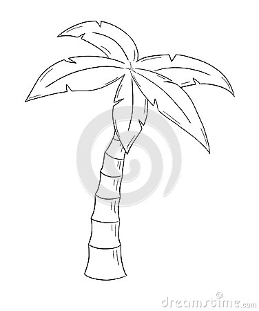 Sketch Of The Palm Tree Royalty Free Stock Photography Image