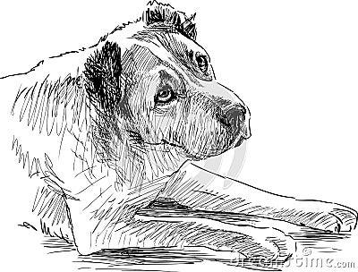 Sketch Of A Sad Dog Stock Vector - Image 50939931