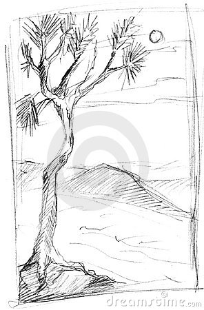 Sketch of tree in countryside
