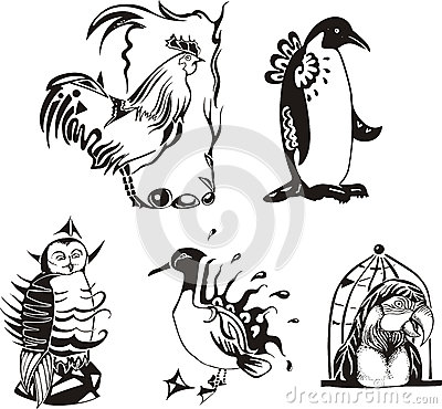 Sketches of miscellaneous birds