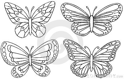 Sketchy Doodle Butterfly Vector
