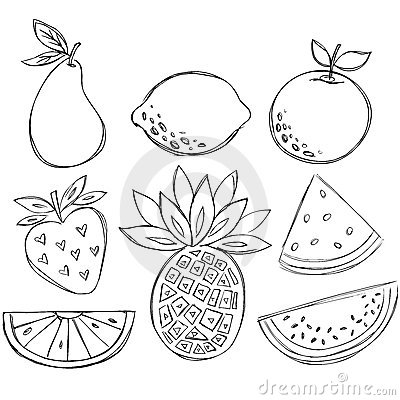 Sketchy Doodle Fruit Vector