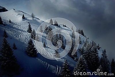 Ski fields