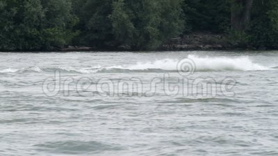Ski nautique sur le Rhin clips vidéos