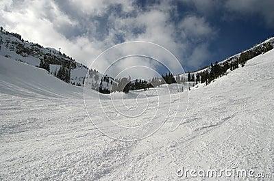 Ski Slope Bowl