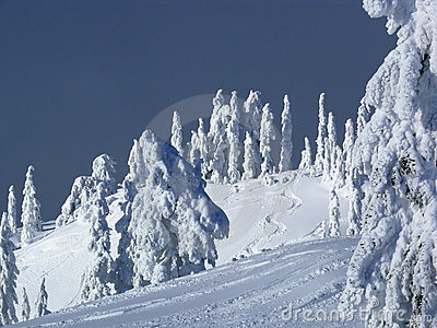 Ski slope with fresh tracks