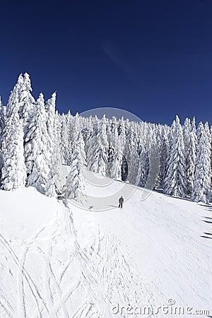 Free Ski Slope On Mountain Side Royalty Free Stock Photos - 1574138