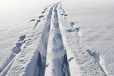 Ski, snow and track