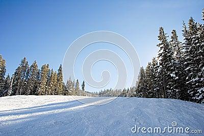 Ski and snowboard slopes