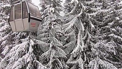 Skiaufzug mit schneebedeckten Bäumen stock video