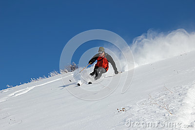 Skier on the hill