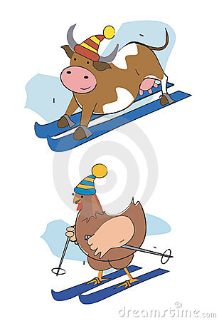 Skier-pullet-cow