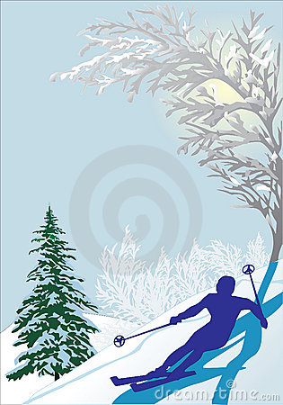 Skier silhouette in snow forest