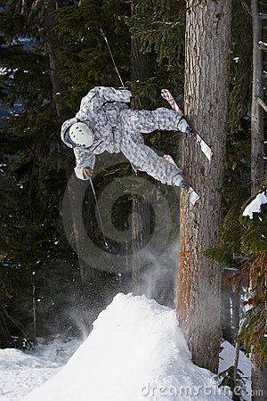 Skier stall on tree