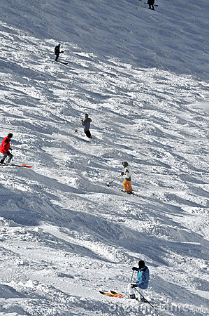Skiers on a mogul field
