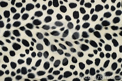 skin dalmatian stock photo image 11788260 dalmatian clip art black and white png dalmation clip art png