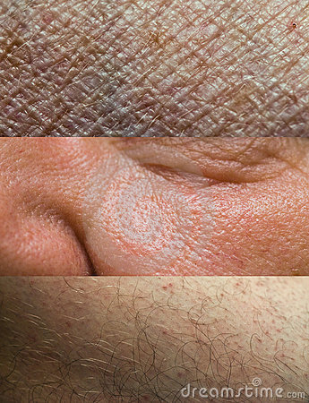 Skin Texture Collection