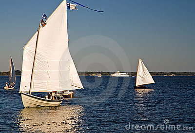 Skipjack Sailing on the Chesapeake Bay