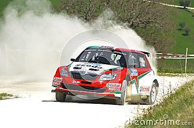 Skoda Fabia Super 2000 Editorial Stock Image