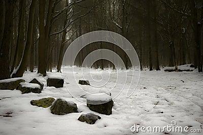 Skogvinter