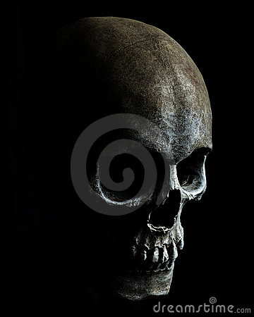 Free Skull Royalty Free Stock Photos - 14867128