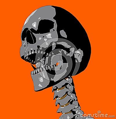 Free Skull 20 Royalty Free Stock Image - 711946
