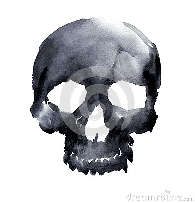 Free Skull Stock Images - 47289684