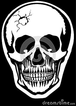 Free Skull Stock Images - 5452904