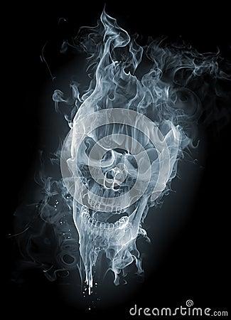 Free Skull Stock Photo - 7771440