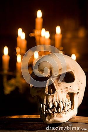 Skull on coffin