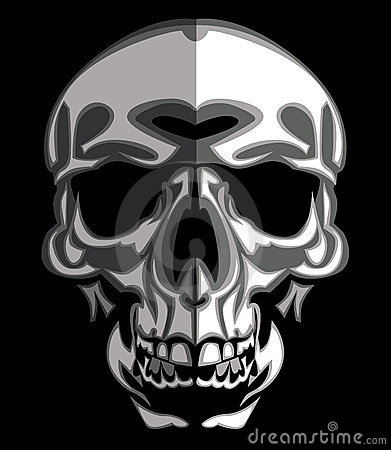 Skull Image on Black Vector