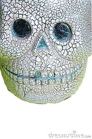 Skull onwhite
