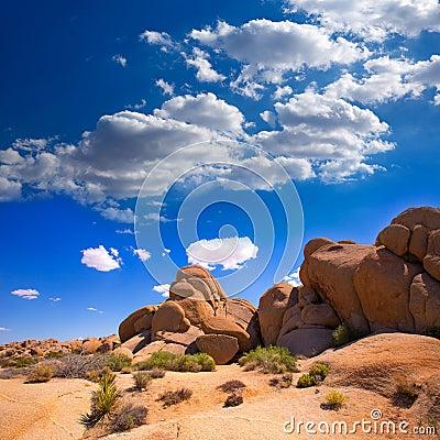 Free Skull Rock In Joshua Tree National Park Mohave California Stock Image - 35765371