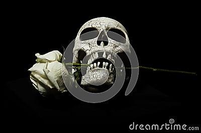 Skull with rose between teeth