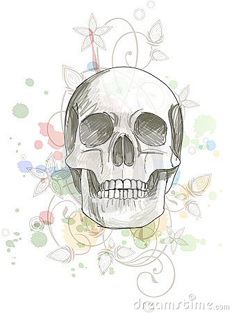 Skull sketch & floral calligraphy ornament