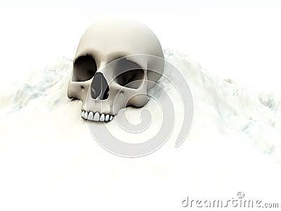 Skull In White