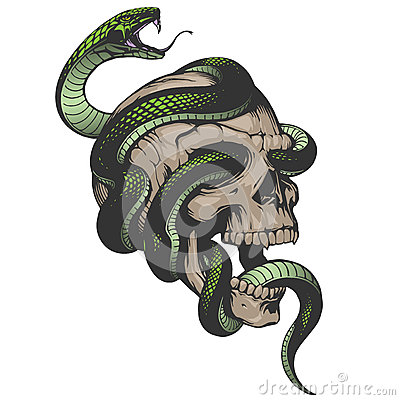 Free Skull With Snake Illustration Royalty Free Stock Photo - 58040955