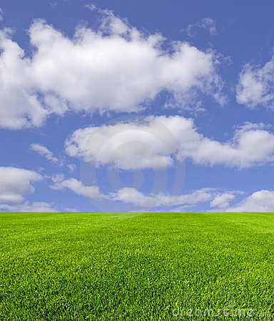 Free Sky And Grass Royalty Free Stock Photos - 14543098