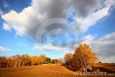 Sky on autumn prairie