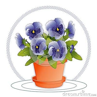 Sky Blue Pansies in Flowerpot