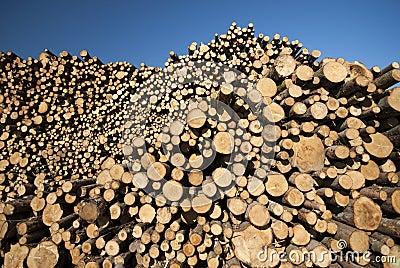 Sky blue pile of wood