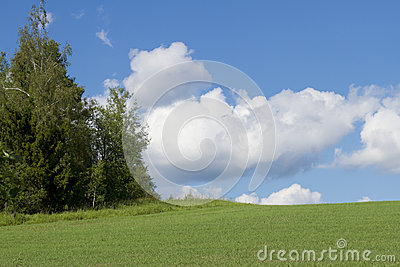 Sky with  clouds and  green meadow
