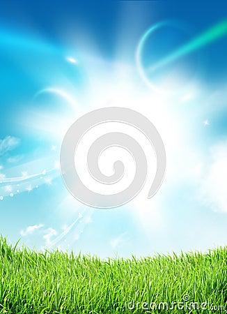 Free Sky Grass Stock Image - 28041771